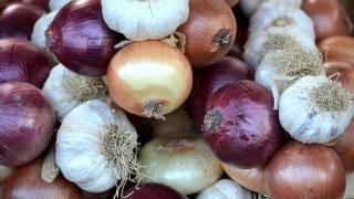 onions garlics